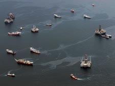 ניקוי כתם הנפט במפרץ מקסיקו, 2010 [צילום: AP/Dave Martin]