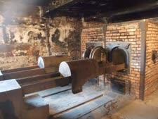 תא גזים באושוויץ [צילום: איתמר לוין]