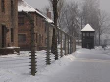 הרוכש נספה באושוויץ [צילום: פלאש 90]