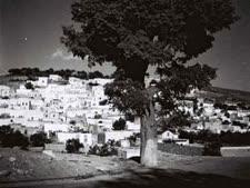 """צפת, 1934 [צילום: זולטן קלוגר/לע""""מ]"""