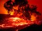אש אוכלת חיים [צילום: נעה ברגר/AP]
