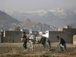 """אפגניסטן. """"אוסמהצוחק בקברו"""" [צילום: אלטאף קאדרי, AP]"""