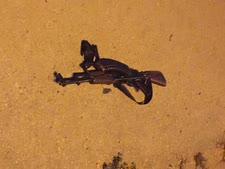 הנשק ששימש בפיגוע