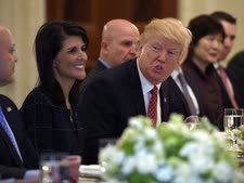 """טראמפ. """"לפתור את הבעיה"""" [צילום: סוזן וולש/AP]"""