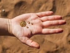 טבעות מברונזה שנחשפו בחפירה [צילום: אסף פרץ, באדיבות רשות העתיקות]