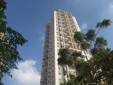 מגדלי התמרים. 96 דירות במקום 49