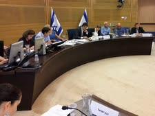 ישיבת הוועדה [צילום: דוברות הכנסת]