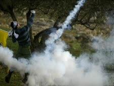 גז מדמיע בהפגנה בבילעין, אתמול [צילום: AP]