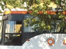 אוטובוס של נתיב אקספרס. מי מפקח על נסיעות החברה בשבת?