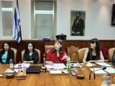 ישיבת ועדת השרים היום [צילום: יואב דודקביץ]