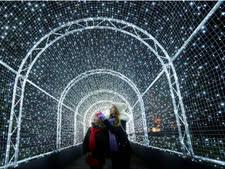 עוברים באור [צילום: פרקנק אוגוסטין/AP]