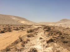 הנחל אחרי הזיהום [צילום: עודד נצר, המשרד להגנת הסביבה]