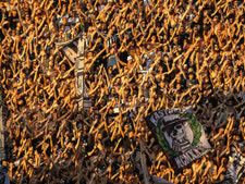אליפות [צילום: גיאניס פפניקוס/AP]