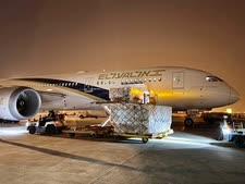 מטוס אל-על מעמיס ציוד בביג'ינג הערב [צילום: דוברות אל-על]