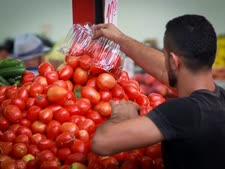 """""""העגבניות ניזוקו"""" [צילום אילוסטרציה: פלאש 90]"""