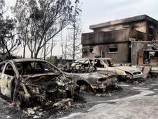 כמה מוקדי שריפה מעוררים חשד [צילום: אבי דישי, פלאש 90]