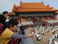 תערוכת פנדה בטאיפיי שבצפון טאיוואן [צילום: AP]