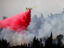 השריפה בהרי ירושלים [צילום: יונתן זינדל, פלאש 90]