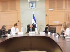 הדיון בוועדת הכלכלה [צילום: דוברות הכנסת, דני שם טוב]