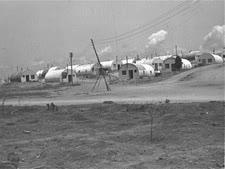 """מחנה יונה [צילום: זולטן קלוגר/לע""""מ]"""