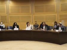 הוועדה לביטחון פנים [צילום: דני שם-טוב, דוברות הכנסת]