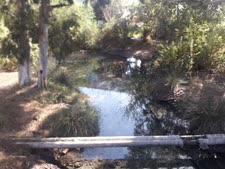 [צילום: ערן יגיל, המשרד להגנת הסביבה]