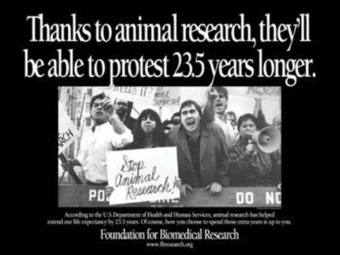 כרזות הסבר ותמיכה בניסויים בבעלי חיים [התמונות באדיבות Foundation for Biomedical Research]