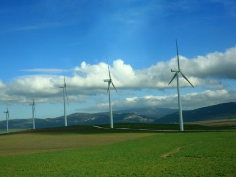 טורבינות רוח. הגורמים התומכים בתעשיית אנרגיית הרוח בישראל טוענים שהיא תביא להוזלה ניכרת בעלויות החשמל לצרכן [צילום: חן ליאופולד/פלאש 90]