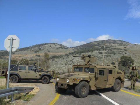שוב בהר דב [צילום: פלאש 90]