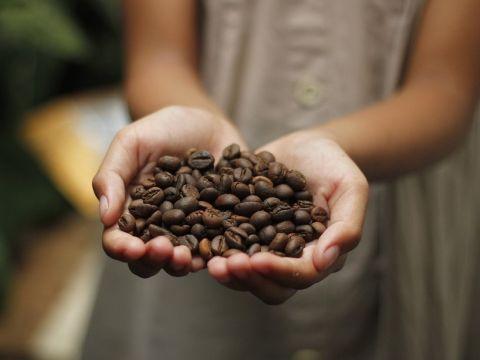 מכונת קפה מבית נספרסו - 3 מכונות קפה מומלצות