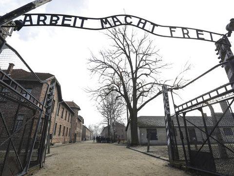 אושוויץ. בצרפת לא שמעו על השואה [צילום: מייקל זון, AP]