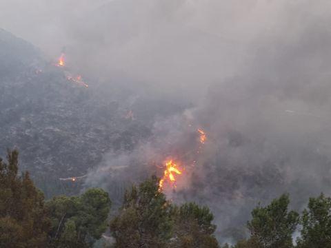 שריפה ביער צ'רצ'יל נוף הגליל [צילום: כבאות והצלה לישראל מחוז צפון]